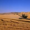 Аграрии Татарстана собрали первый миллион тонн зерна урожая-2019