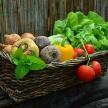 В Татарстане заработал сервис по продаже фермерских продуктов